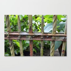 Rusty fence Canvas Print