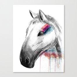 Rainbow Horse Canvas Print