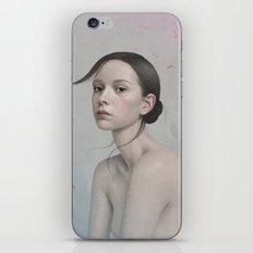 380 iPhone & iPod Skin