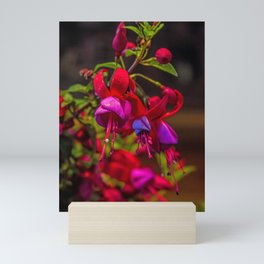 Fuchsia Dreams Mini Art Print