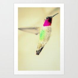 """Hummingbird"" Art Print"
