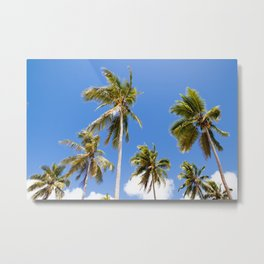 Palm life Metal Print