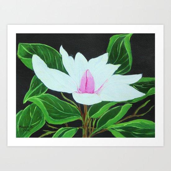 Magnolia /close up Art Print
