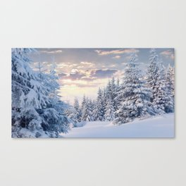 Snow Paradise Canvas Print