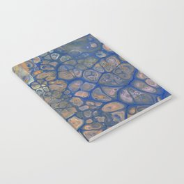 Octopus Abstracted Notebook