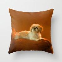 shih tzu Throw Pillows featuring Shih Tzu by ThePhotoGuyDarren