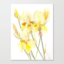 Yellow Irises, Soft yellow Floral Art Canvas Print
