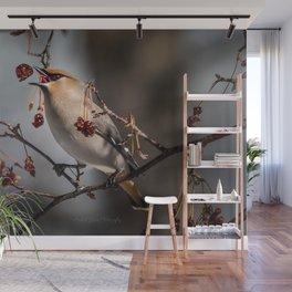 Cedar Waxwing Berry Flip Wall Mural