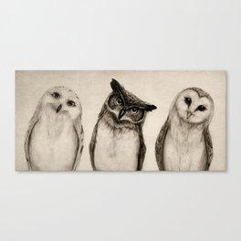 The Owl's 3 Canvas Print
