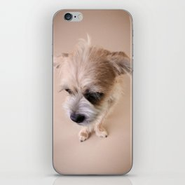 Puppy Pixie Love iPhone Skin