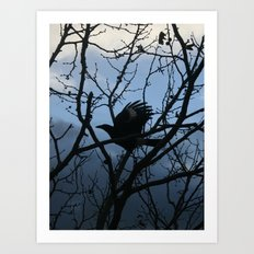 Pied Currawong Silhouette DPG150613 Art Print