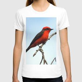 Mr. Vermillion Flycatcher T-shirt