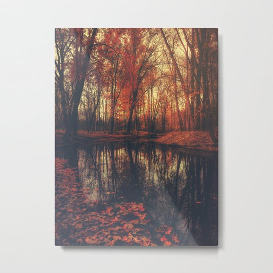 Where are you? Autumn Fall - Autumnal forest Metal Print
