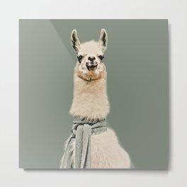 Vintage Cold Llama Metal Print