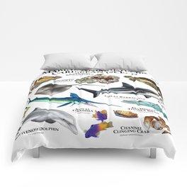 Marine Animals of the Caribbean Ocean Comforters