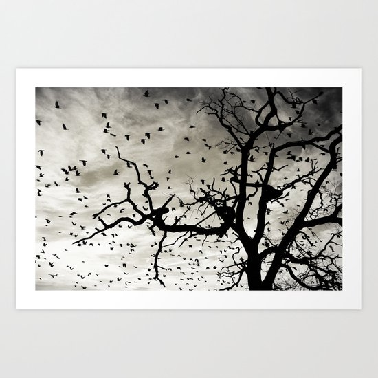 The sky is for birds Art Print
