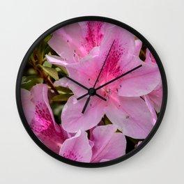 Gladiolus Wall Clock