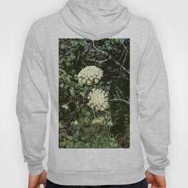 Queen Anne's Lace II Hoody