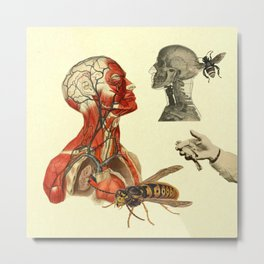 My soul is full of wasps Metal Print