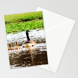 Canada Goose and Goslings II Stationery Cards