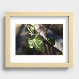 Little Emerald Recessed Framed Print