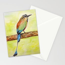 Turquoise Browed Motmot — National Bird of El Salvador Stationery Cards