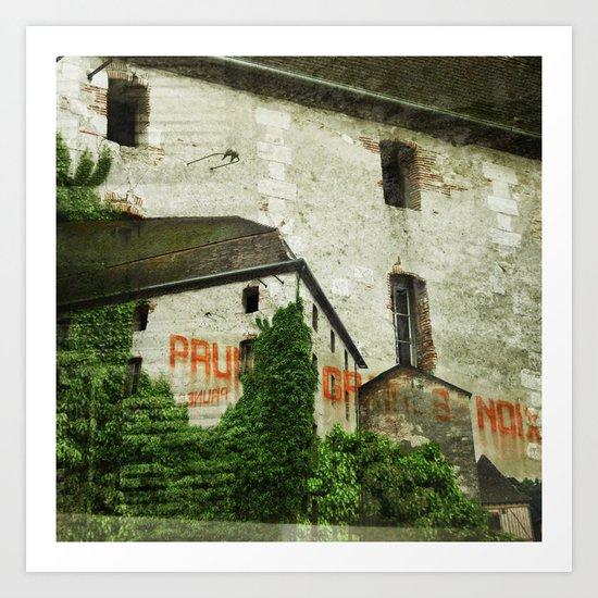 Prunes Graines Noix Art Print