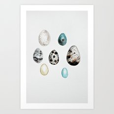 egg collection - watercolor Art Print