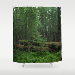 Fallen Tree in The Dense Forest Shower Curtain