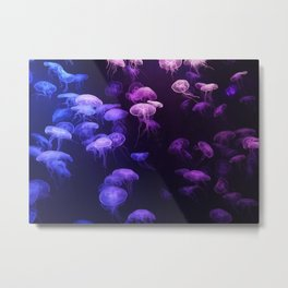 Blue and pink jellyfish Metal Print