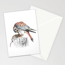 Bird Stationery Cards
