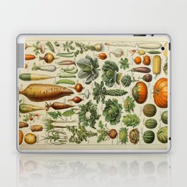 VEGETABLES Legumes Et Plantes Potageres Vintage Scientific Illustration French Language Encyclopedia Laptop & iPad Skin