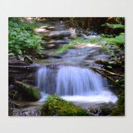 Little Creek Running Down Canvas Print