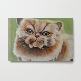 Art, oilpainting persian cat Metal Print