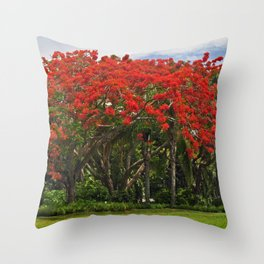 Royal Poinciana Tree Throw Pillow