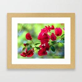 Ruby Blooms Framed Art Print