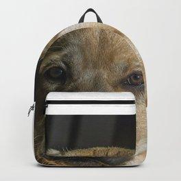 LABRADOR Backpack