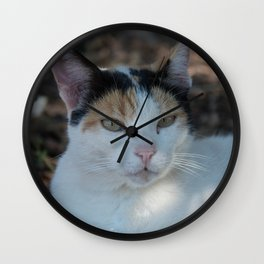 Cat Dubrovnik Wall Clock