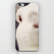 White Rabbit iPhone & iPod Skin