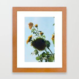 hudson Framed Art Print