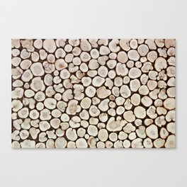 Background of wooden slices tree Canvas Print