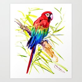 Parrot Scarlet Macaw, Tropical Birds, Jungle Red, Green Blue bright colored tropical artwork Art Print