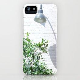 Street photography lamp & tree II iPhone Case