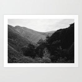 Big Sur, CA Art Print