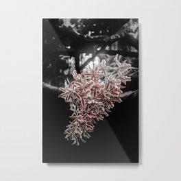 鏡花水月 Metal Print