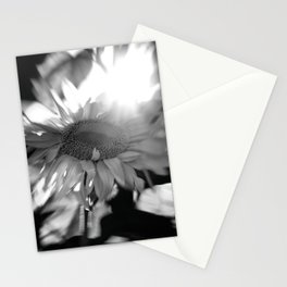 black and white sunflower Stationery Cards