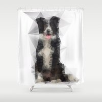 border collie Shower Curtains featuring Collie Funk by Blue Muse