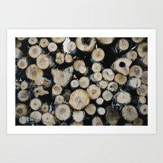 Northland Minnesota - Logs Art Print