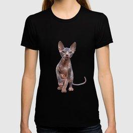 Drawing Sphynx kitten T-shirt