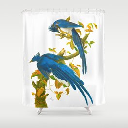 Columbia Jay John James Audubon VIntage Birds Of America Illustration Shower Curtain